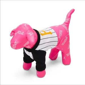 PINK Victoria's Secret Accessories - PINK Mini Pittsburgh Backpack and Dog